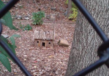 Idea for the Weekend: Build Fairy Houses
