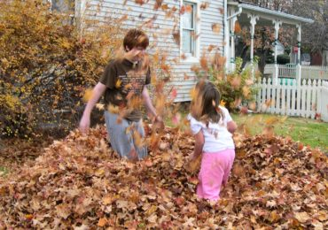 Idea for the Weekend: Jump in a Leaf Pile!